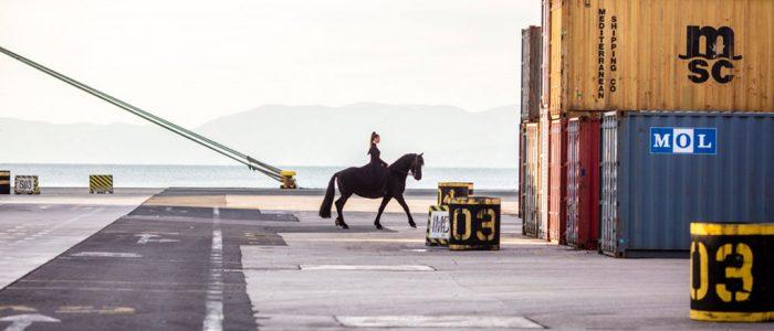 Reiterin am Hafen