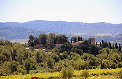 winehills El Palace Loves Wine